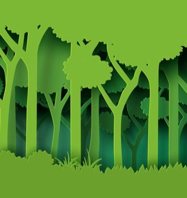 Exhibition sustainability: a new partnership